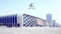中国·辛集皮革城