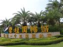 碧桂園椰城
