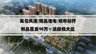 40萬平米大型高端品質住宅開發商自己的物業管理更放心