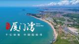 深圳厦门湾
