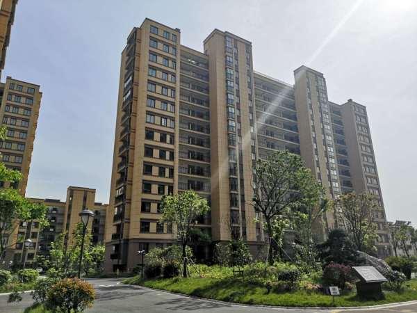 5万方,总体有八栋楼组成,其中前面三栋楼为多层,总层高七层,一楼带图片