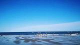 泰禾厦门湾