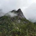 博象詠山水文化藝術小鎮 景觀園林 原始森林公園