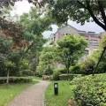 保利西塘樾 景觀園林