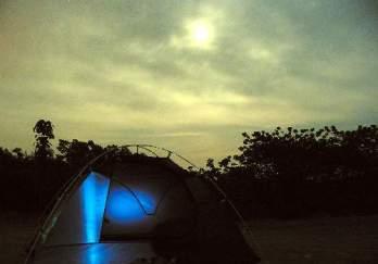 紫蓬山国家森林公园图片
