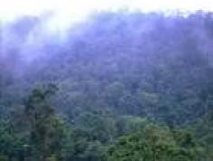 圭峰山图片