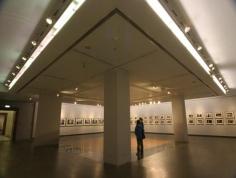 广东美术馆图片