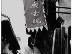 淳溪老街图片