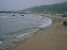 菊花岛图片