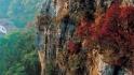 抱犊崮国家森林公园
