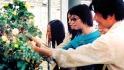 中國彩棉科技園