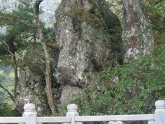 青山湖图片