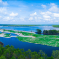 碧桂园森林城市 景观园林 【实拍】森林城市高尔夫项目