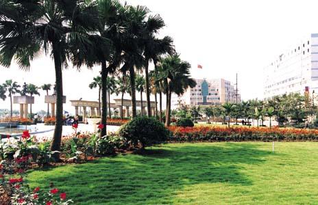 欧式绿梦广场图片图片